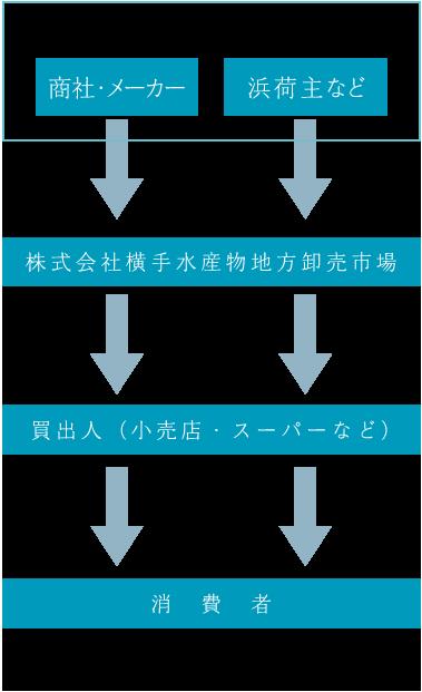 流通の概略図 仲卸を介さないシンプルな仕組み